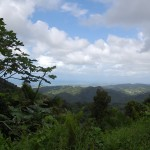 El Yunque National Park